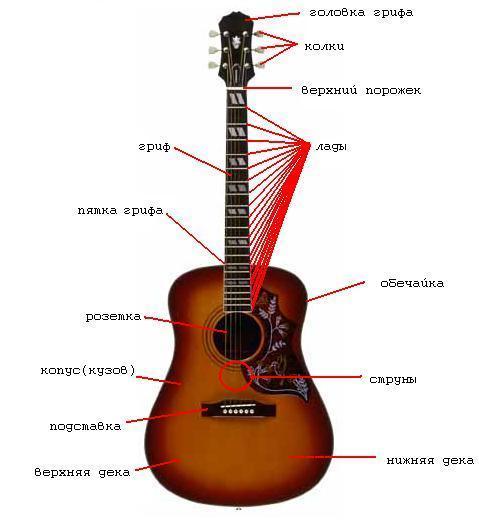Корпус гитары делается из